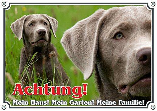Hundewarnschild Labrador Retriever -TOP Hundeschild - 1,5 mm Metallplatte -, DIN A5