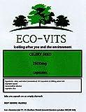 ECO-VITS Estratto di semi di sedano (2500MG) 120 CAPS