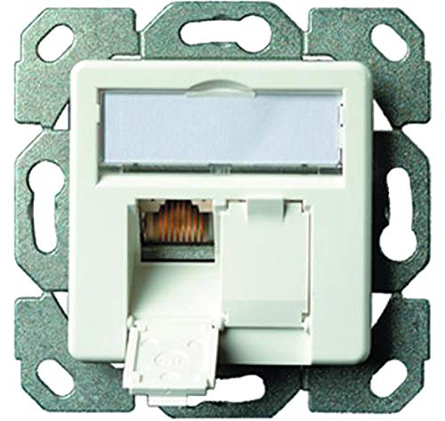 Telegärtner Datenanschlussdose Cat6A 2-Fach 2xRJ45 J00020A0500 AMJ45 8/8 UP/50 alpinweiß, 5 V