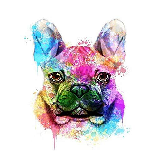 DIY Oil Painting kit, Paint by Numbers kit for Kids and Adults - Color French Bulldog Dog - 40 50cm (Frameless)