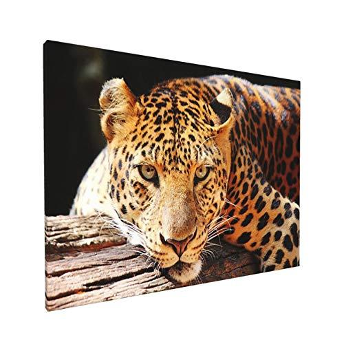 AuHomea Leinwandbild mit wildem Leopardenmuster, 40,6 x 30,5 cm, fertig zum Aufhängen, ungerahmt