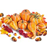 Artificial Pumpkins and Gourds,Assorted Lifelike Fall Fruits for DIY Craft Thanksgiving Centerpieces(124 PCS)