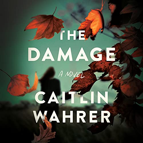 The Damage Audiobook By Caitlin Wahrer cover art