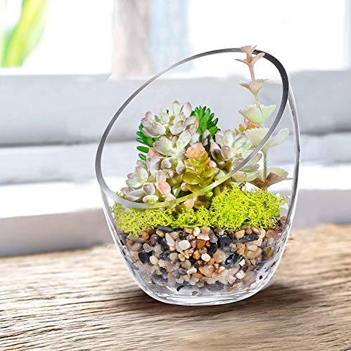 KNIKGLASS - Cuenco de burbujas de corte inclinado transparente, cuenco de pescado y terrario de plantas, tarro de caramelo de corte inclinado en forma central, jarrón de flores redondo