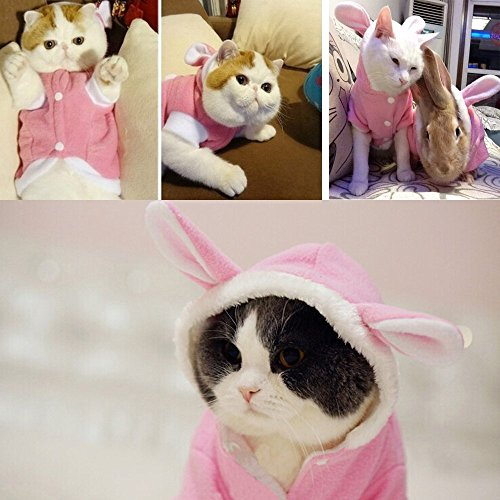 Bro'Bear Plush Rabbit Outfit with Hood & Bunny Ears for Small Dogs & Cats Pink (Medium)