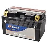 V Platinum – Batería PTZ10S-BS MF, no Requiere Mantenimiento