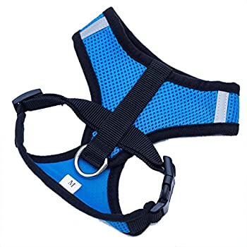 Locisne Mesh Tissu Dog Vest Harnais souple réglable confortable | Pet Chest Lead Walking Leash avec clip (Bleu, Petit)