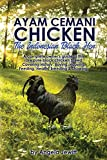 Ayam Cemani Chicken - The Indonesian Black Hen. A complete owner's guide to this rare pure black chicken breed. Covering History, Buying, Housing, Feeding, Health, Breeding & Showing.