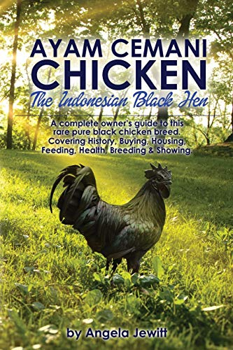 Ayam Cemani Chicken - The Indonesian Black Hen. A complete owner