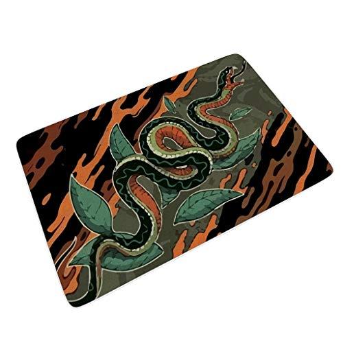 Rcerirt Snake Grappige vloermatten voor laarzen schrapers super absorberend absorberend vocht snel op en weerstaat vuil met anti-slip rubber voor grijze snake
