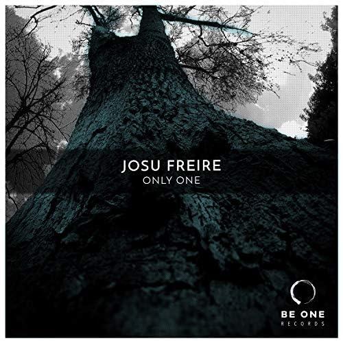 Josu Freire