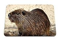 22cmx18cm マウスパッド (ヌートリアげっ歯類ビーバー) パターンカスタムの マウスパッド