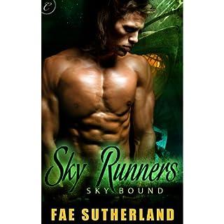 Sky Runners audiobook cover art