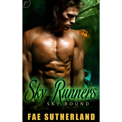 Sky Runners audiobook cover art