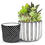 UNIQOOO 2P Handmade Black White Flower Pots Planter Organic Paint, Multi-Purpose Cement w/ Drainage, Indoor Outdoor Home Garden Plants Container Vase, For Succulent, Orchid Cactus Herb 5.75 /4.75 Inch