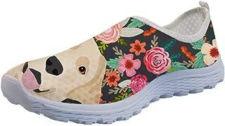 labrador retriever shoes