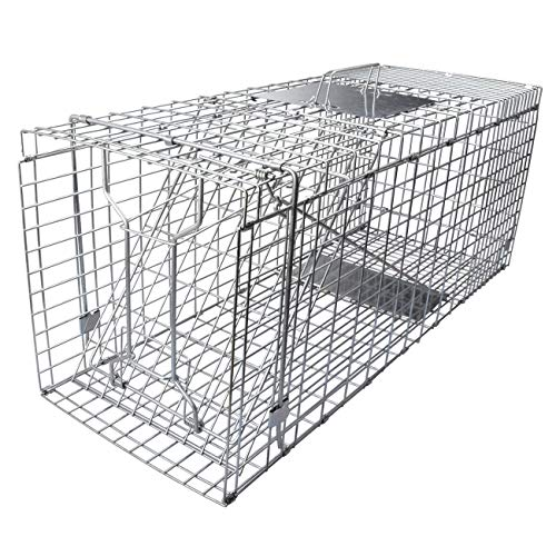 Gingbau Live Cat Trap Collapsible Humane Animal Cage Trap for Armadillo, Groundhog, Opossum, Large...