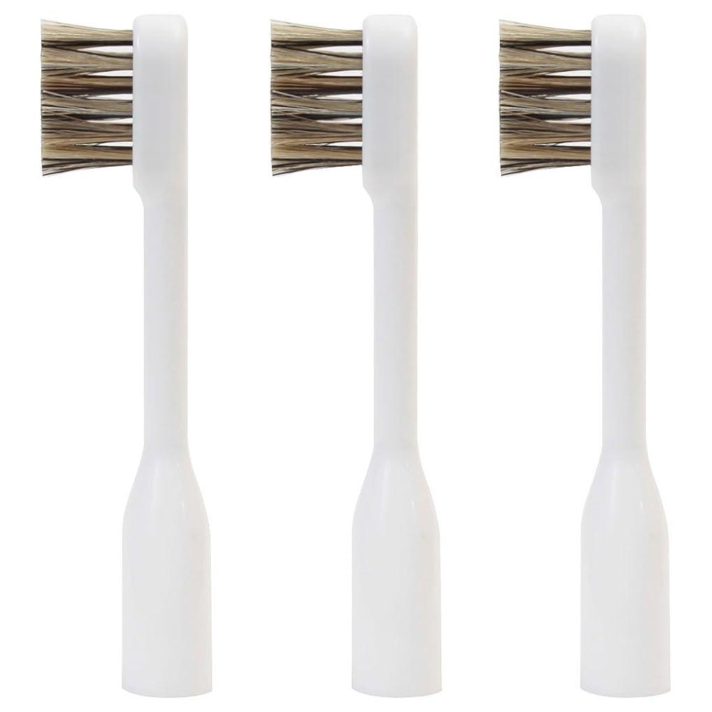 実験的素晴らしい良い多くの自分のためにラテール 交換用スペアブラシ 天然毛 スモールヘッド