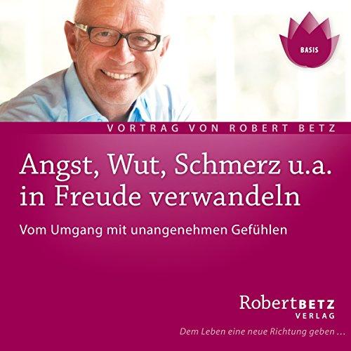 Angst, Wut, Schmerz u.a. in Freude verwandeln audiobook cover art