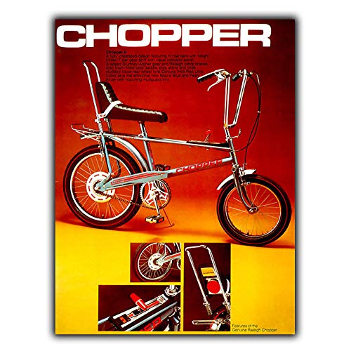chopper bike raleigh - 5