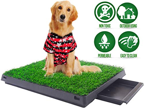 Sailnovo Hundetoilette Hundeklo Welpentoilette Trainingsunterlage mit Kunstrasen, 3-Schichtig Hunde Toilette Training Hundetöpfchen Rasenmatte für Kleine/Grosse/ältere Hunde Tier WC Stubenrein (XL)