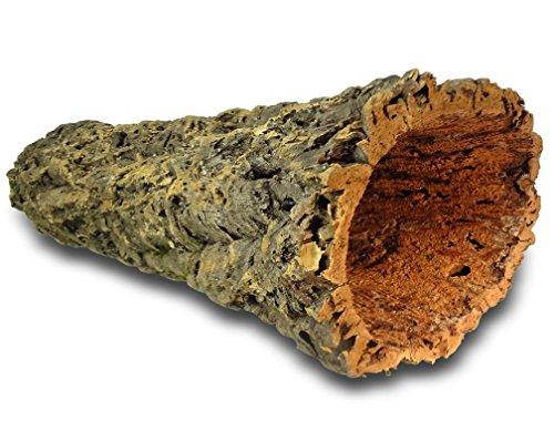 Kork-Deko XL Korkröhre | Korktunnel | Korkrinde | gereinigt & desinfiziert, ca. 60 cm, = 15-20 cm (extra lang, extra dick, XXL)