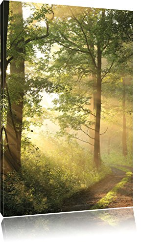 Waldweg im Winter, Format: 100x70 auf Leinwand, XXL riesige Bilder fertig gerahmt mit Keilrahmen, Kunstdruck auf Wandbild mit Rahmen, günstiger als Gemälde oder Ölbild, kein Poster oder Plakat