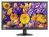 Lenovo 61B7JAT6EU Computerbildschirme 23.8 inches LED