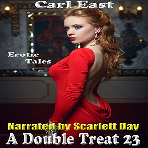 A Double Treat 23 audiobook cover art