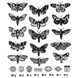 Tim Holtz Stampers Anonymous 2021 Cling Stamp - Moth Study - CMS436