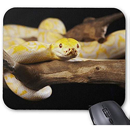 Smity-Mode entwarf Mousepad 30 * 25 * 0,3 cm Büro-und Familien-Tischplatten-Auflagen-gelbe Abino-Pythonschlange auf Baumast-Mausunterlage