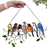 Mzeyuan Mini pájaro decapado ventana colgante, cristal pintado pájaros, ventana colgante, placa grande, Bird Series Ornamentos, colgante, decoración del hogar (7 pájaros)