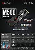 Biostar M500-256GB M.2 NVMe 8GB Internal Solid State Drive SSD