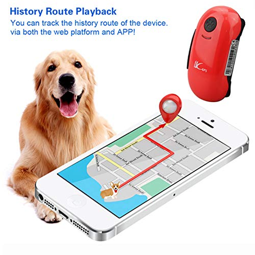 Rastreador GPS, rastreador GPS para Perros y Gatos, localizador en Tiempo Real GPS/gsm, localizador de ubicación, Impermeable, rastreador GPS para Mascotas con Seguimiento de aplicación Gratuita