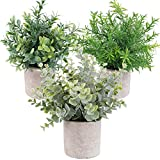 OUTLEE 3 Pack Mini Artificial Potted Plants Faux Eucalyptus Plants Boxwood Rosemary Greenery in Pots Small Houseplants for Home Decor Office Desk Shower Room Decoration.