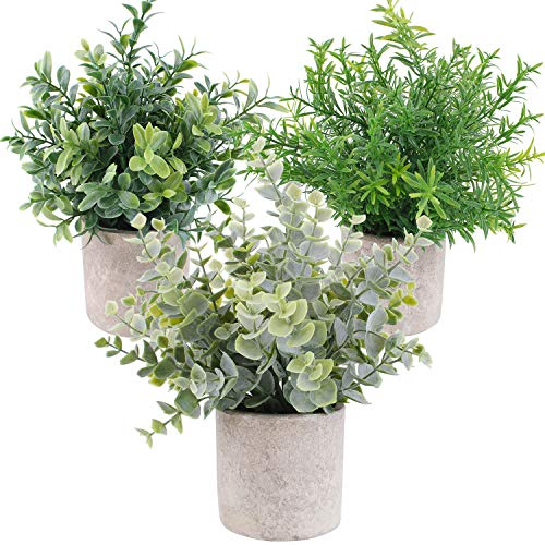 OUTLEE 3 Pack Mini Artificial Potted Plants Faux Eucalyptus Plants Boxwood Rosemary Greenery in Pots Small Houseplantsfor Home Decor Office Desk Shower Room Decoration.