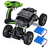Remote Control Car, 4WD High Speed RC Car for Boys Adults 1:18 Scale