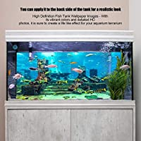 水槽ステッカー、紙張りデカールはPVC水中ポスターを厚くし、美しいディスプレイを作成するための水族館の外観を向上させます(61*41cm)
