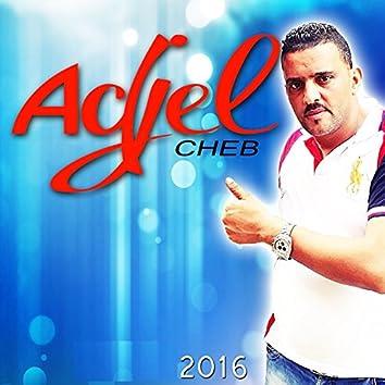 Cheb Adjel 2016