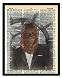 Star Wars Chewbacca Wall Decor Star Wars Poster Chewbacca