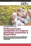 Malformaciones congénitas en mujeres gestantes expuestas a plaguicidas: Riesgo de malformaciones congénitas en mujeres gestantes expuestas al uso de Plaguicidas