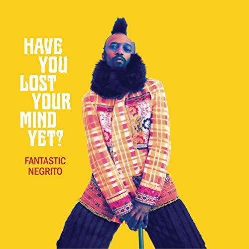 Have You Lost Your Mind Yet? [Vinyl LP]