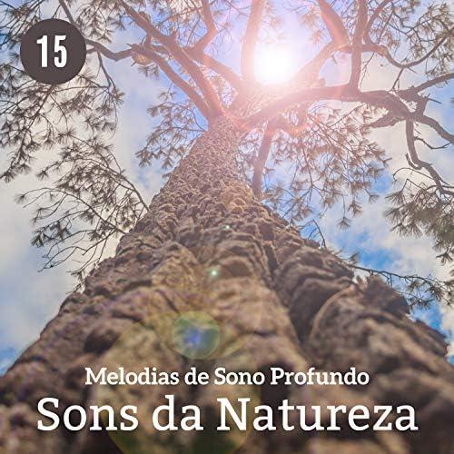 Hipnose Natureza Sons Coleção