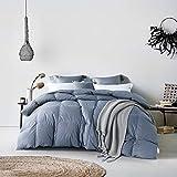 Warm Kiss Home Luxury Gray Color White Goose Down Comforter Duvet...