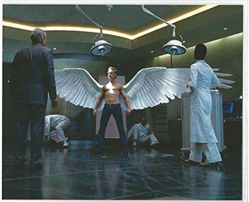 X-Men The Last Stand with Ben Foster as Angel 8 x 10 LAMINATED Photo 003
