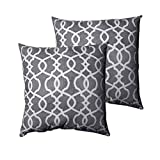 Rainlin Set of 2 Decorative Velvet Throw Pillow Covers Square Cushion Case Soft Farmhouse Pillowcase for Sofa Couch Living Room Bedroom 20 x 20 Inch Grey