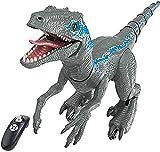 HGFDSA Dinosaurio Juguete De Control Remoto,Electric Mando A Distancia Dinosaurio,Jurassic Dinosaurio World,con Luz Y Rugido Realista Juguetes,Radio Control Dinosaurio Robot,Niños 3 4 5 Años