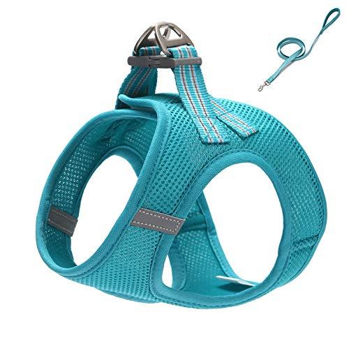 Conjunto de arnés y correa ajustable para mascotas para perros pequeños, cachorros y gatos, entrenamiento al aire libre y correr M