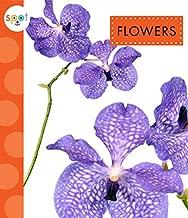 Flowers (Spot)