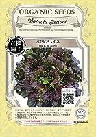 グリーンフィールド 野菜有機種子 バタビアレタス <緑&赤 混色> [小袋] A055